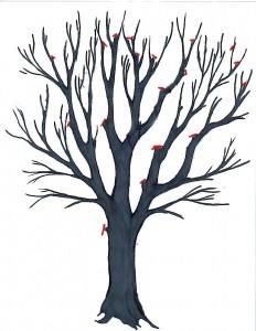 pruningcrownreductioncomplete
